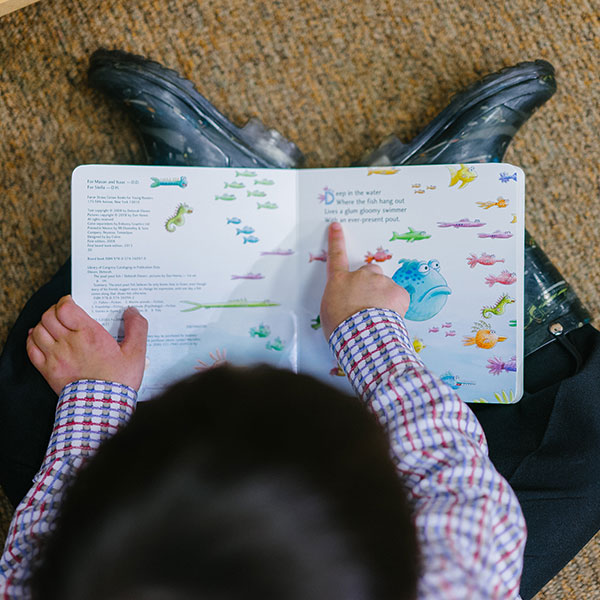 Image: Little boy reading a book